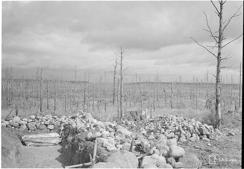 Taipale 1942.07.25