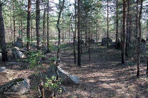 Проход в надолбах, сделанный советскими саперами
