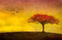 Autumn tree artwork