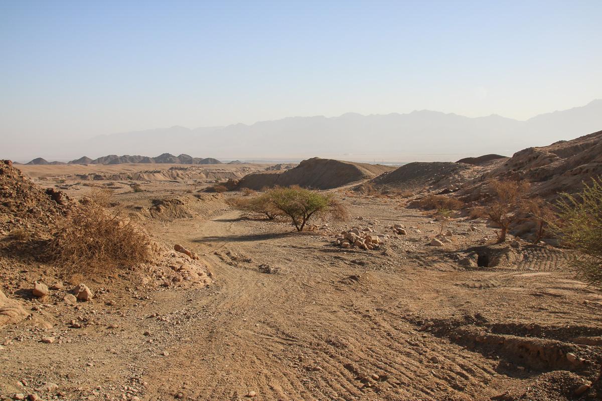 Eilat_025.jpg
