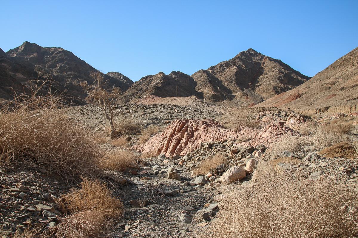 Eilat_032.jpg