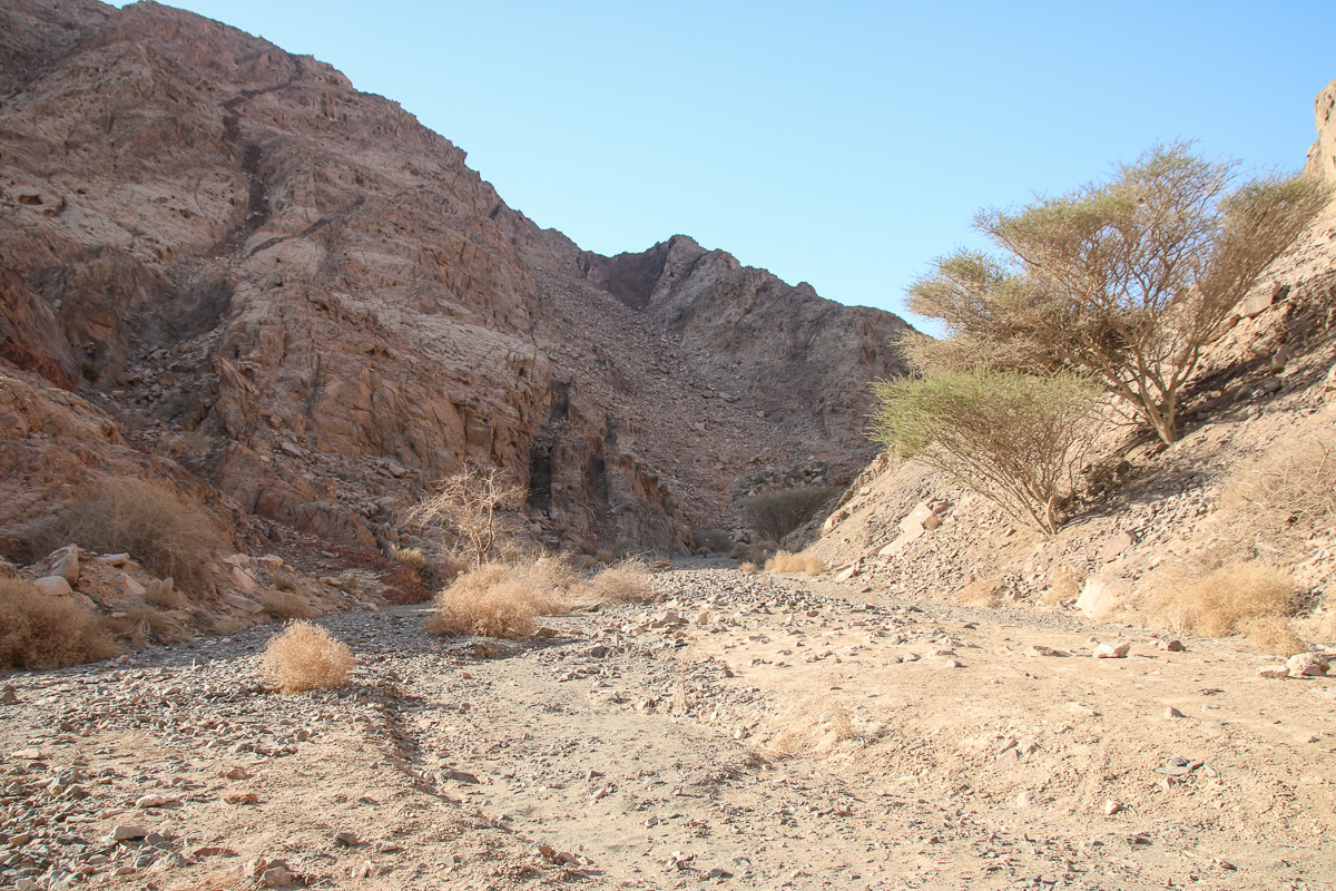Eilat_036.jpg