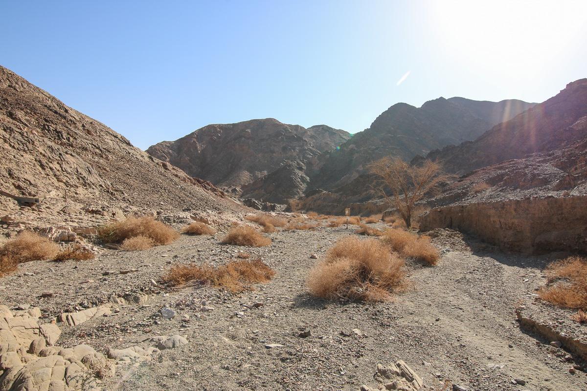 Eilat_037.jpg