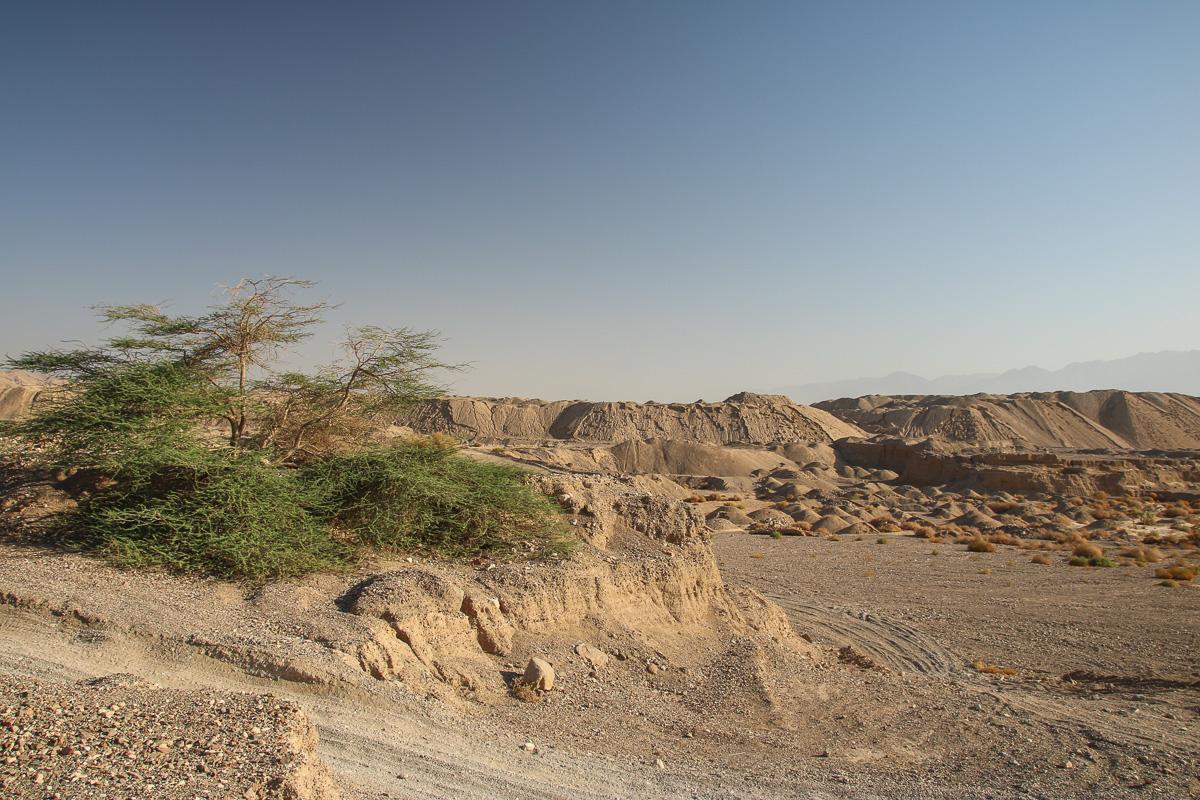 Eilat_043.jpg