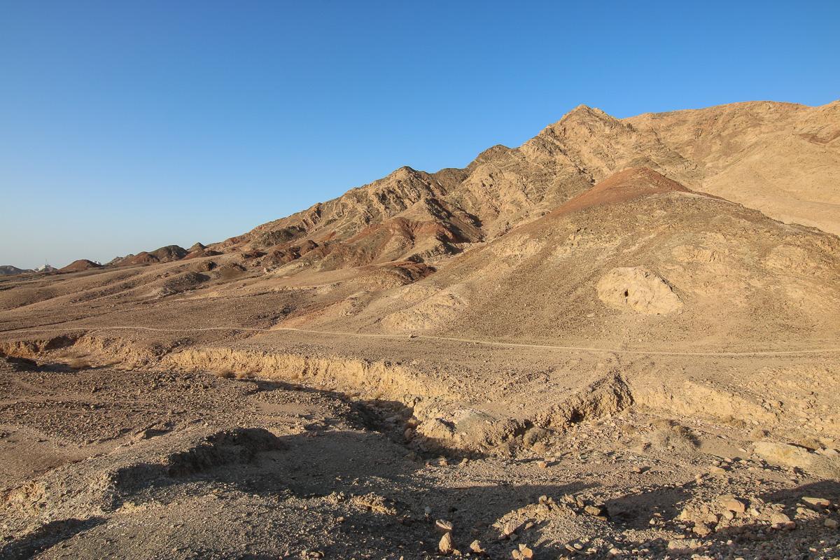 Eilat_059.jpg