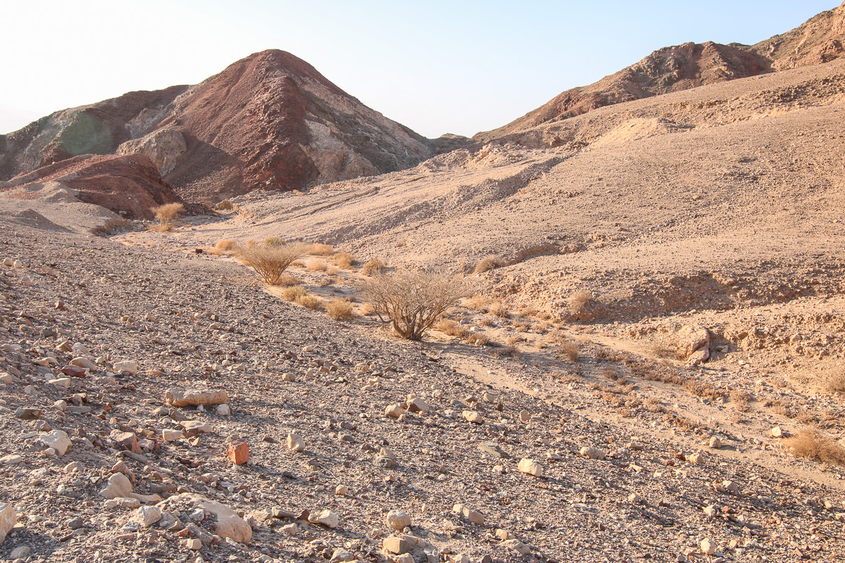 Eilat_060.jpg