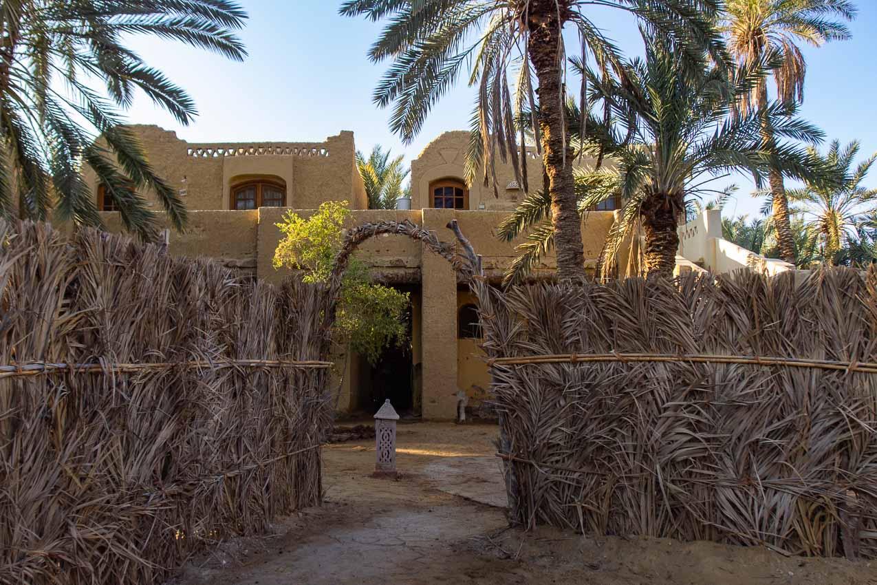 Egipta_suno_002.jpg