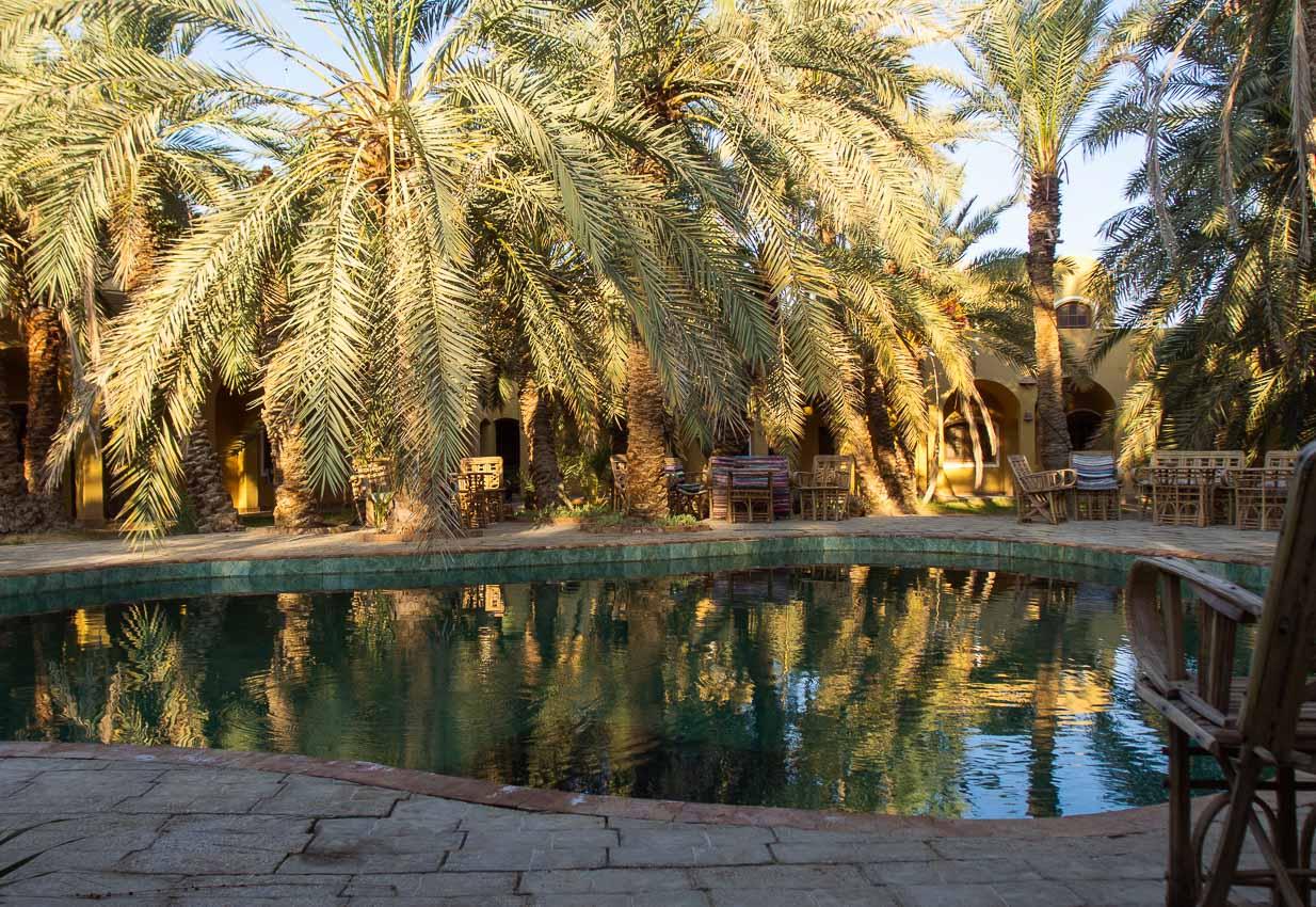 Egipta_suno_004.jpg