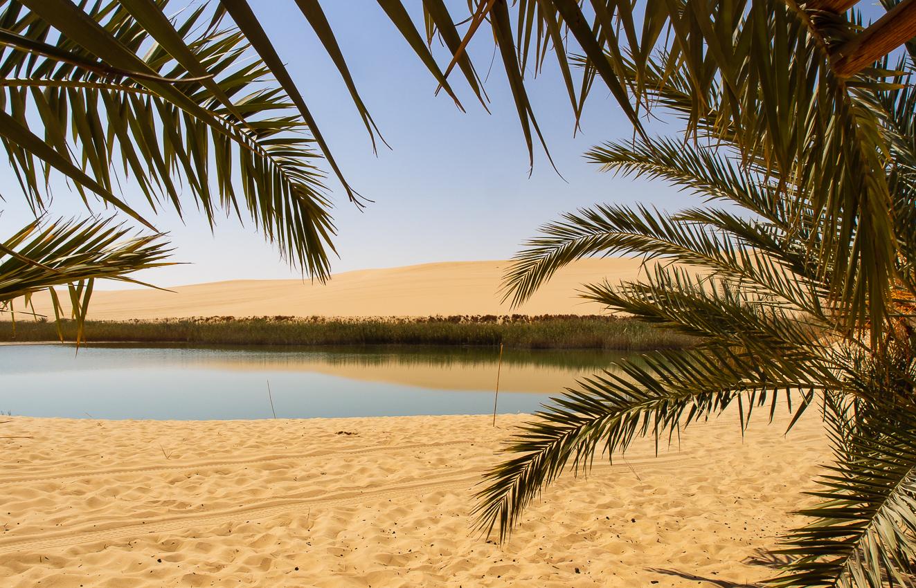 Sahara_005.jpg