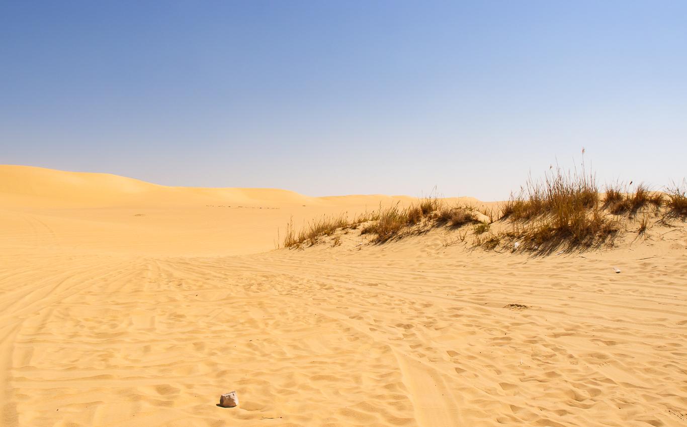 Sahara_007.jpg