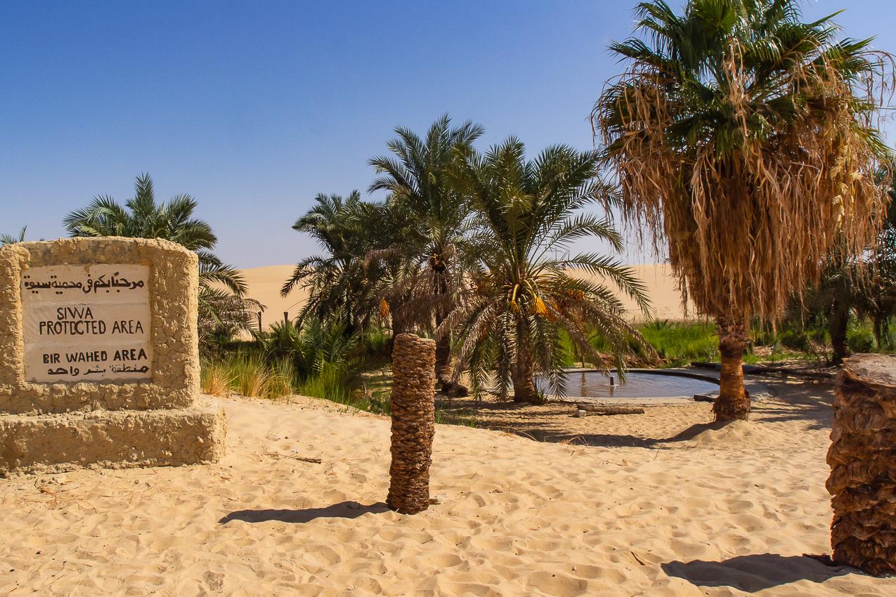 Sahara_011.jpg