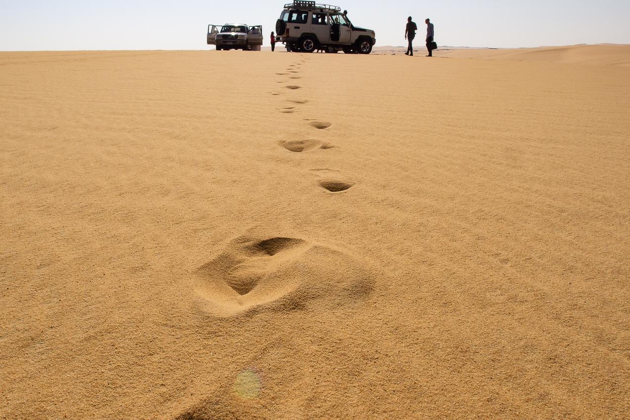 Sahara_014.jpg