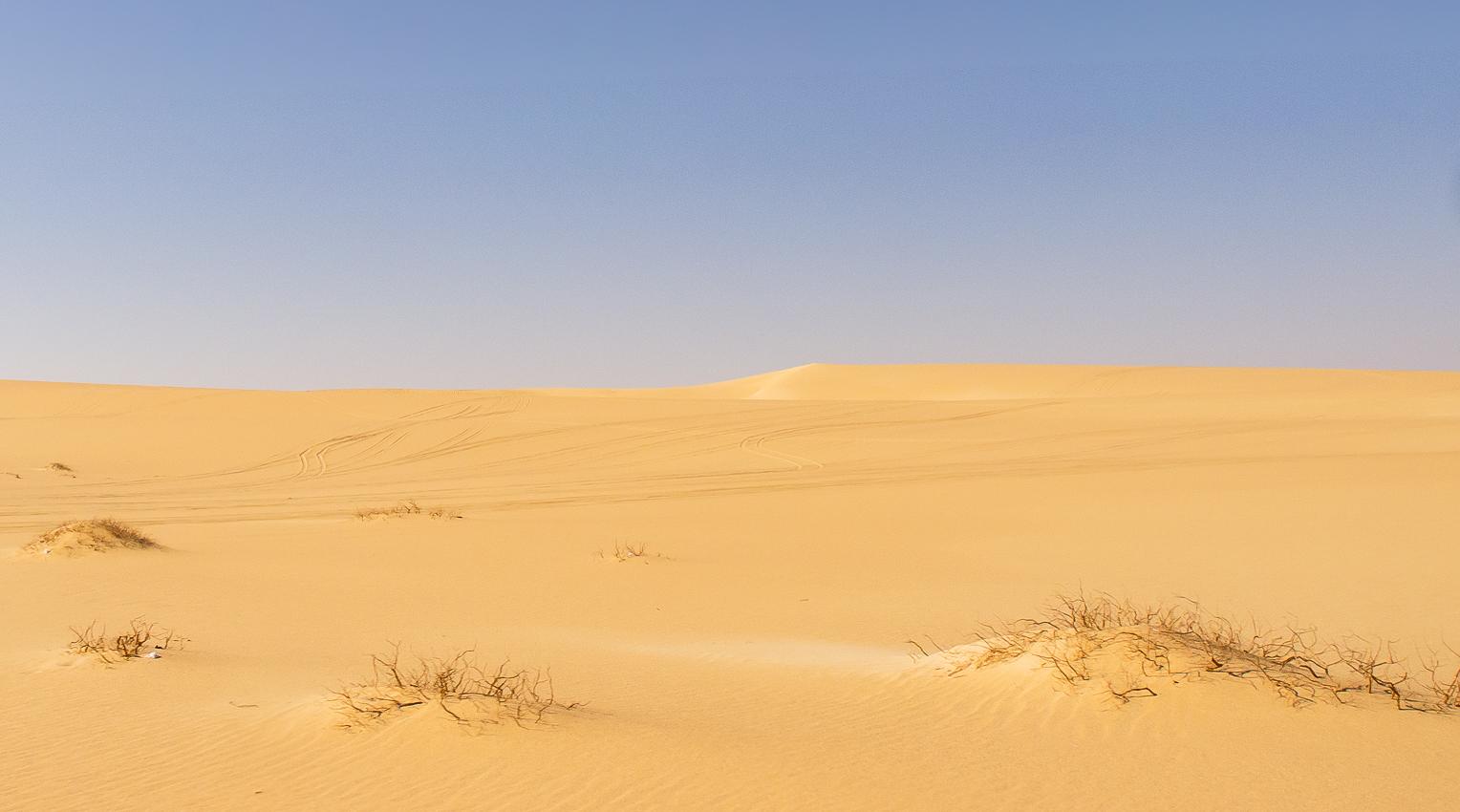 Sahara_027.jpg