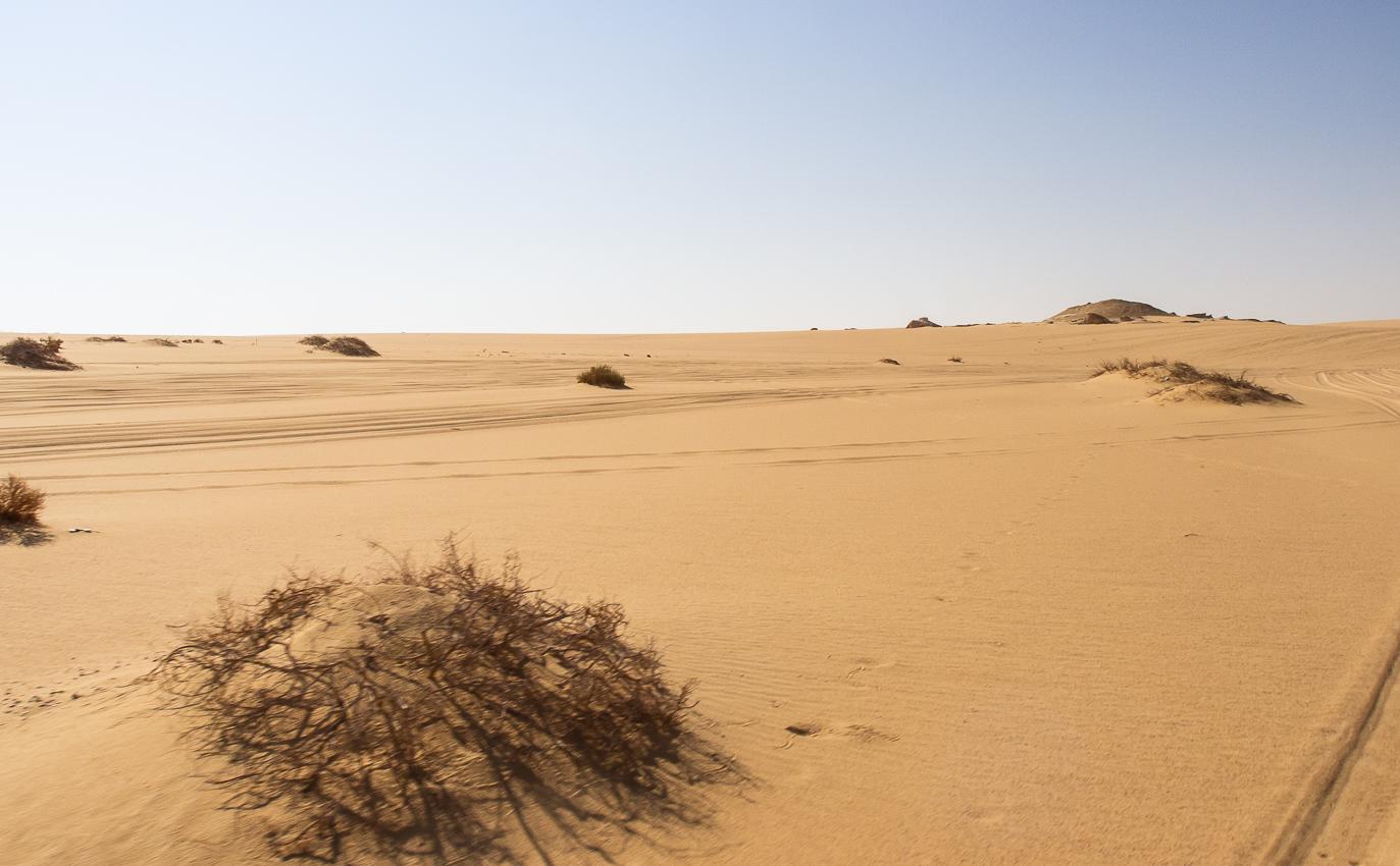 Sahara_028.jpg