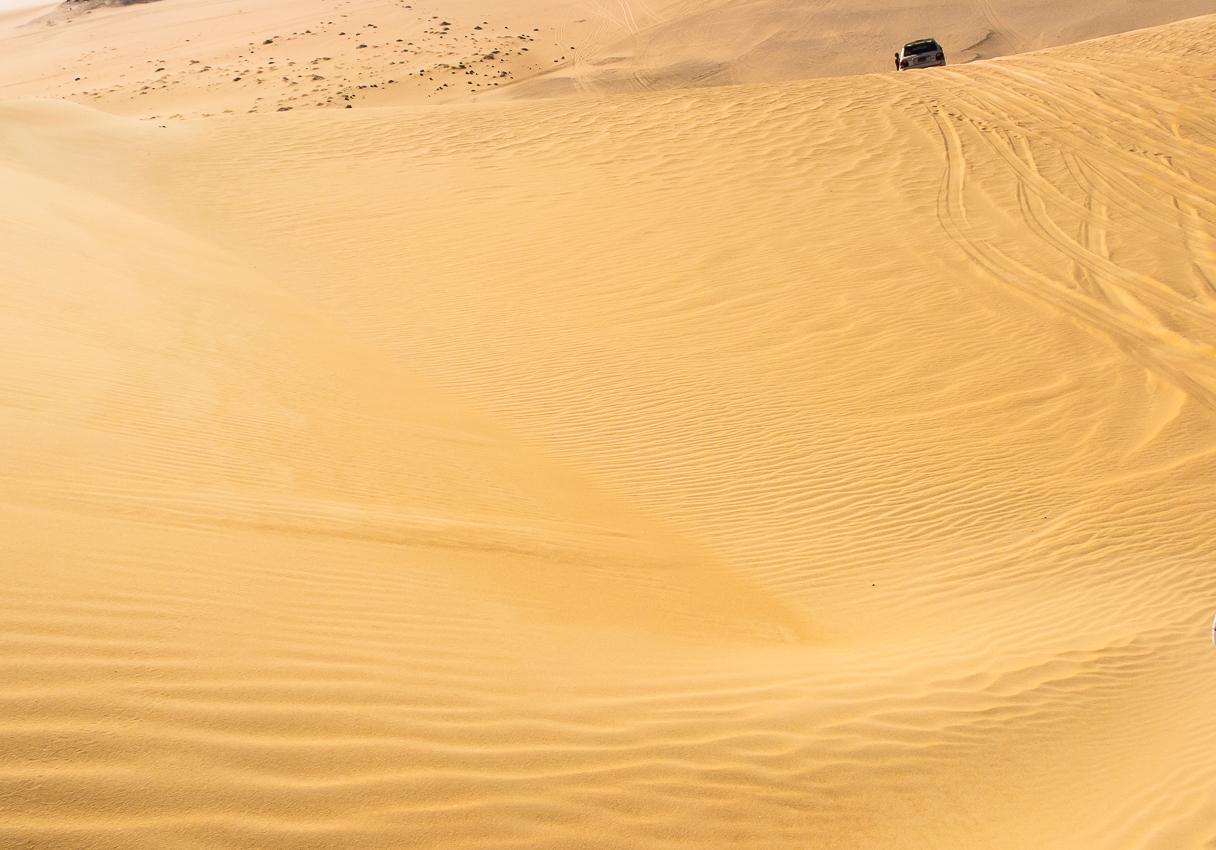 Sahara_045.jpg