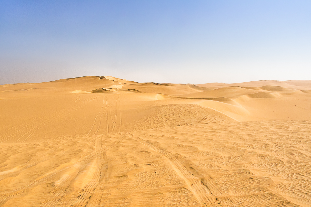 Sahara_025.jpg