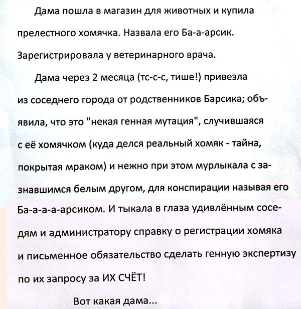 barsik_006.png
