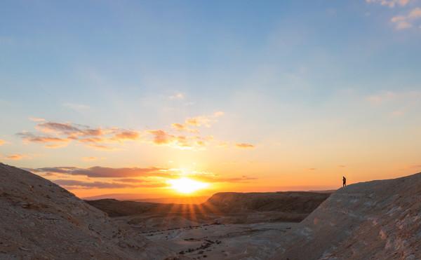 Пустыни пышные ланиты