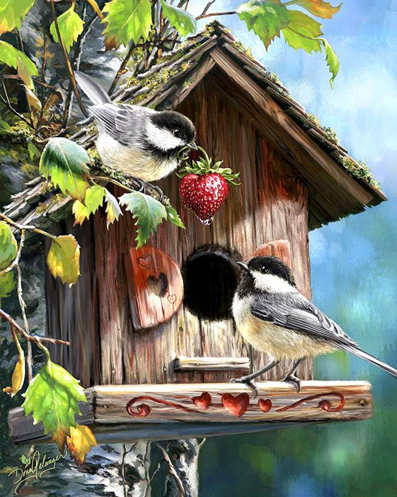 Живописные птички зимой и летом
