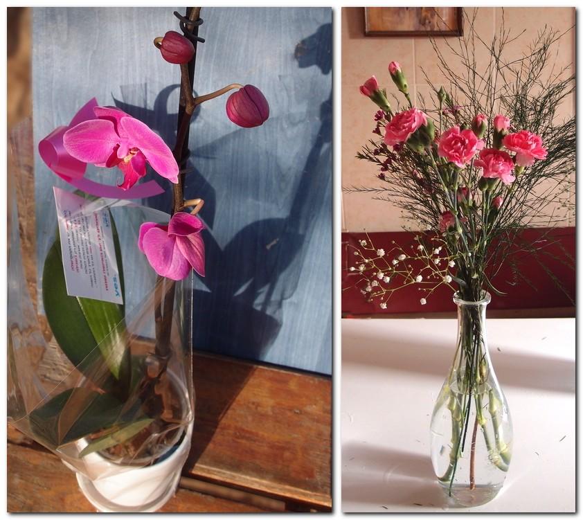 Весна-весна, цветы-цветы