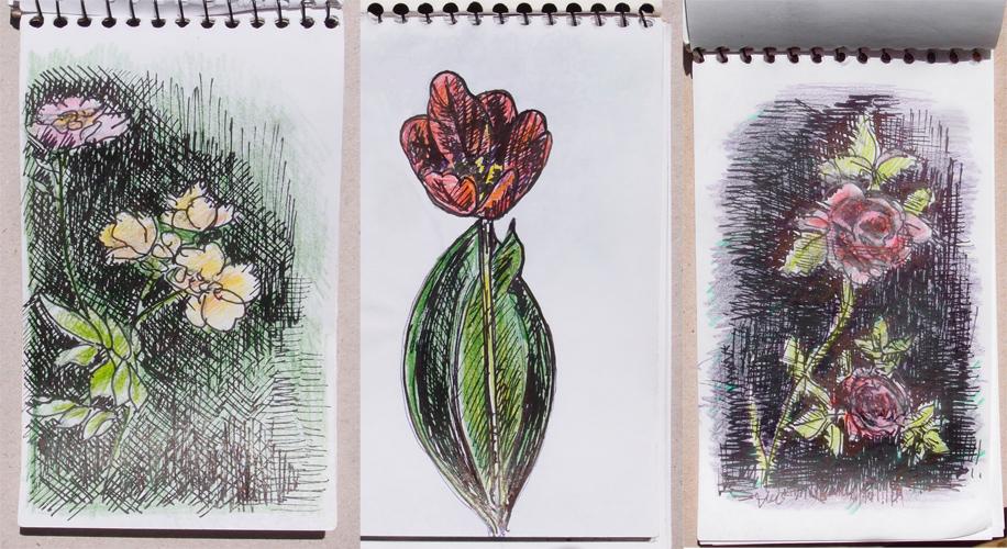Цветочные странички