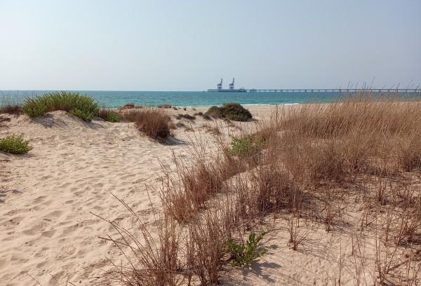 🏖 12 занятий на берегу Средиземного моря