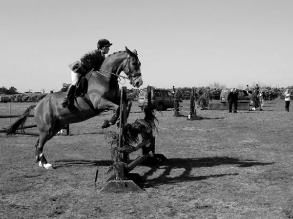 horse-jumping-1336043575efD