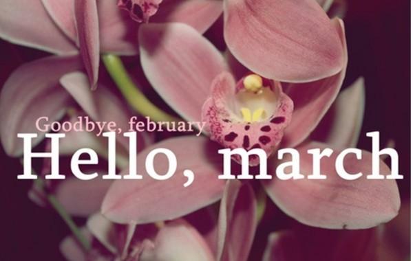 Goodbye-February-Hello-March-Whatsapp-DP