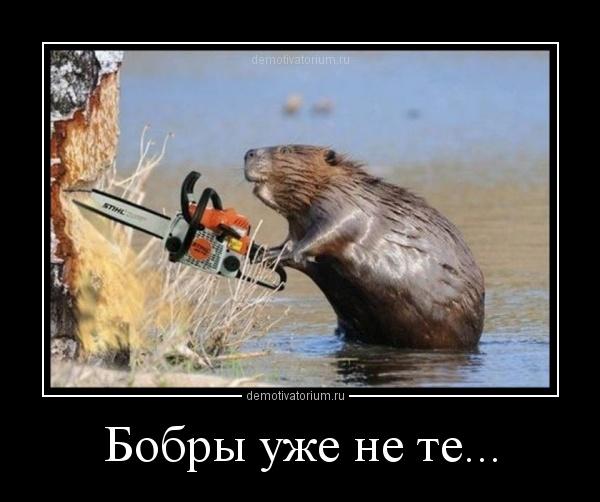 http://ic.pics.livejournal.com/fr4nkc/39738414/8740/original.jpg
