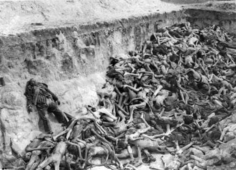 the holocaust the most potent and efficient way of mass murder during world war ii The holocaust and american public the brutal war and mass murder that had been in part an outgrowth germany on voice of america during world war ii.