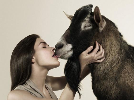 фото секса с овцой