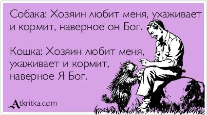 atkritka_1330868768_225