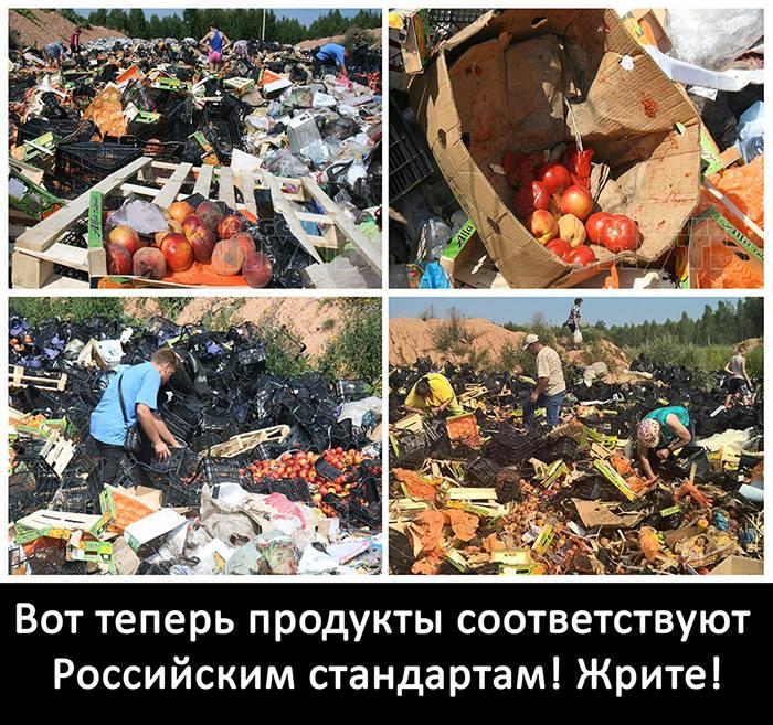 Присутствие российской авиации в Сирии - это сигнал Украине, - нардеп Петренко - Цензор.НЕТ 8453
