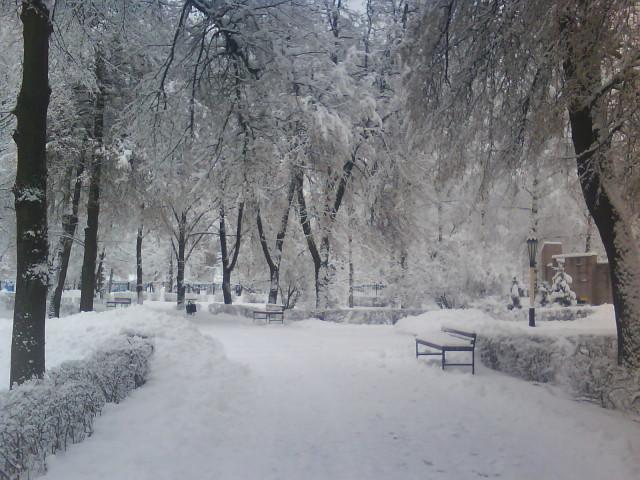 парк под снегом