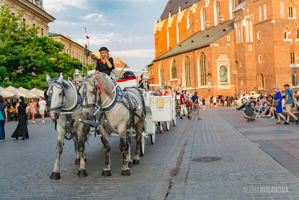Краков: Старый город и Национальный музей