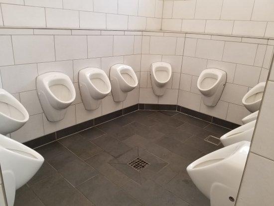 пивная туалет