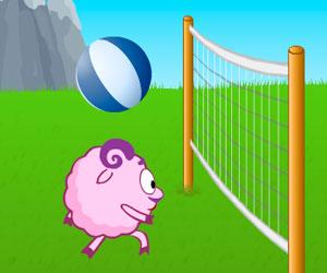 Смешарики и Волейбол