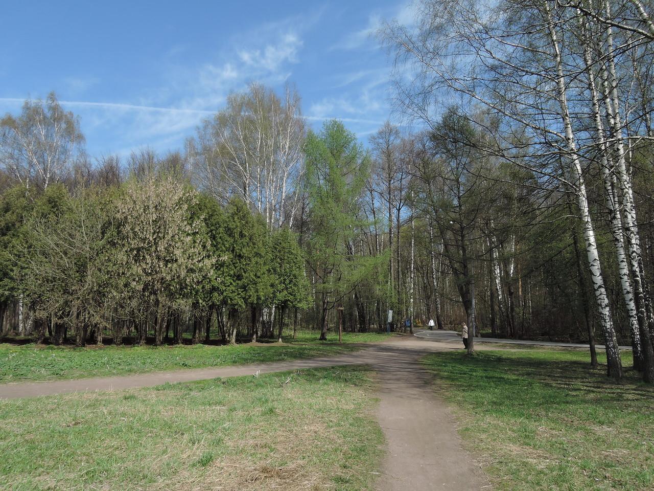 Измайловский парк