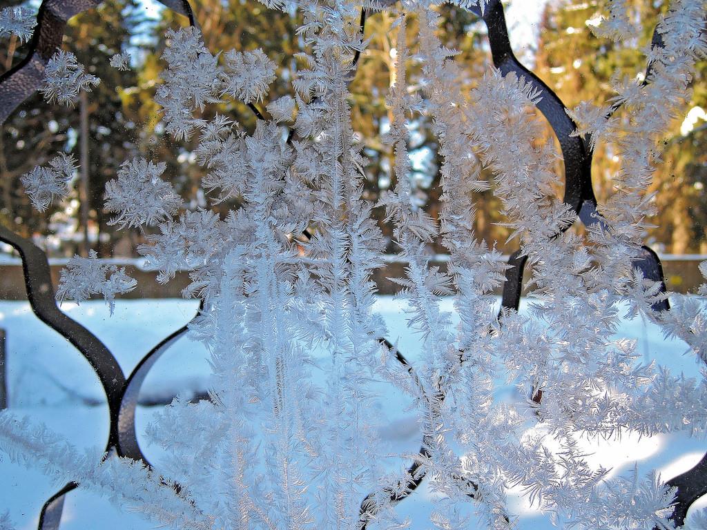 Мороз рисует узоры на окне