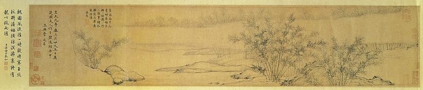 Побеги бамбука в тумане под дождем