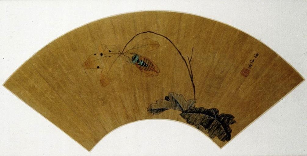 Цикада на листке