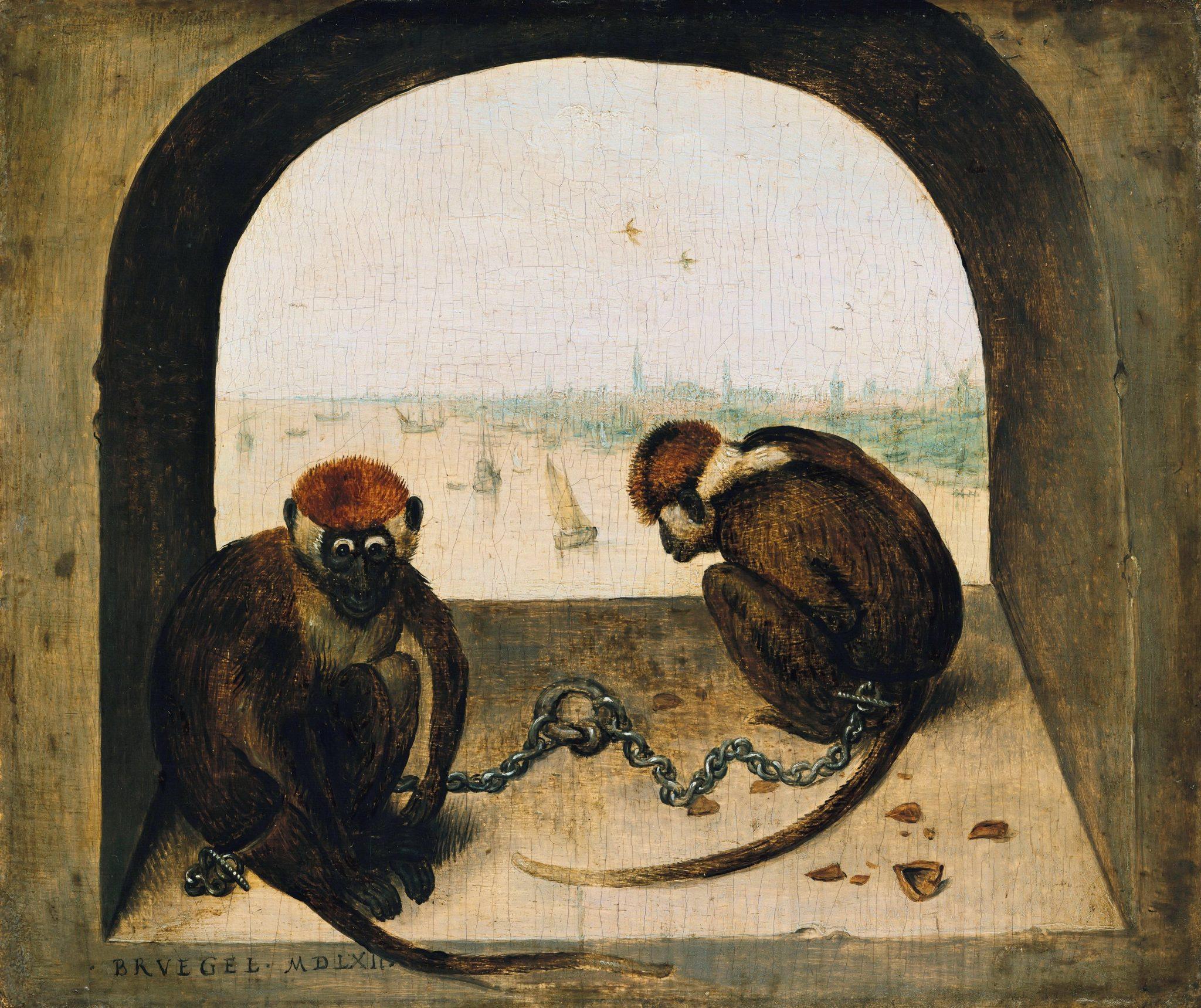 Питер Брейгель Старший Две обезьяны