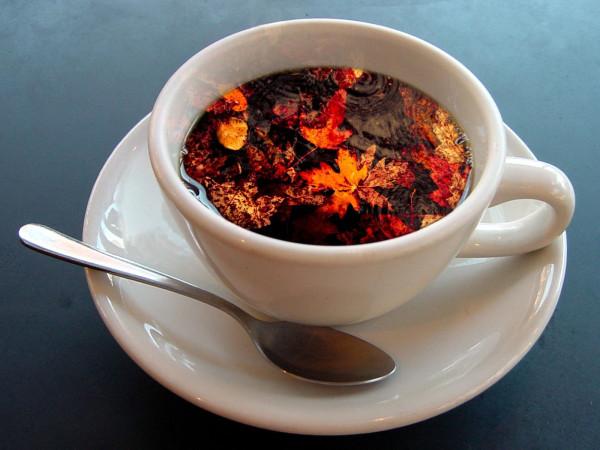 осенний-чай