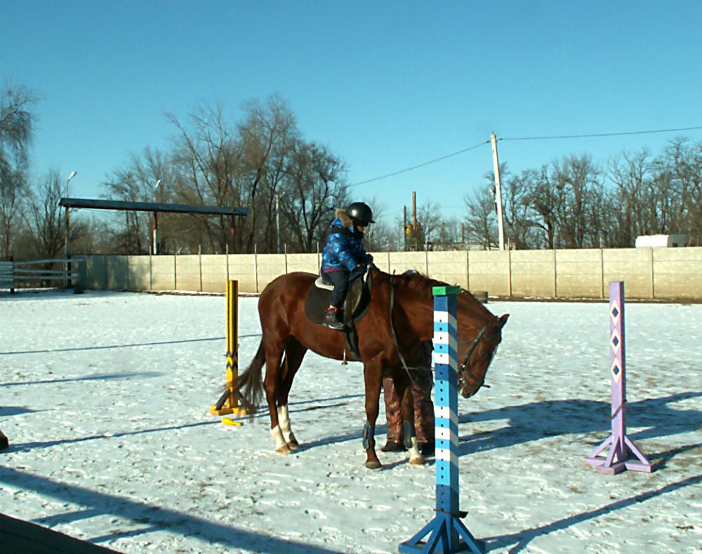 Таганрог казаки казачество конный центр атаман