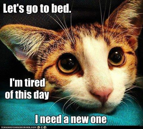 I need a new day.jpg