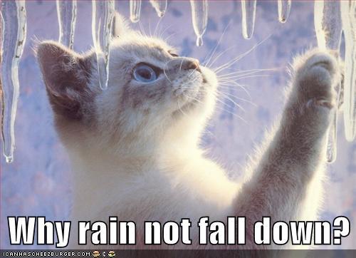 why rain not fall down.jpg
