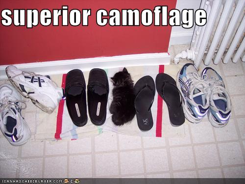 superior camoflage.jpg