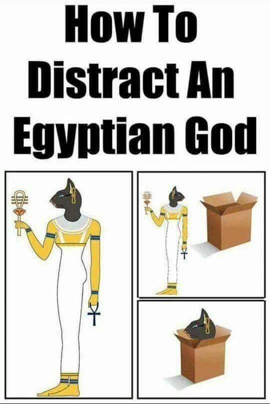 How to distract an Egyptian God.jpg