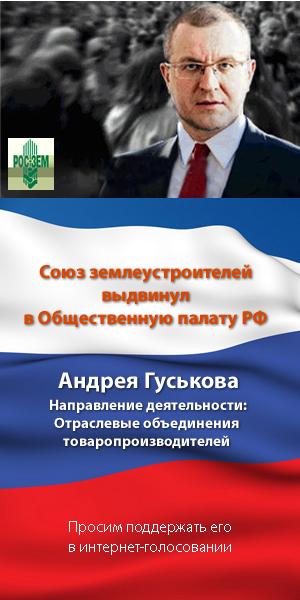 Гуськов Андрей Евгеньевич Общественная палата РФ