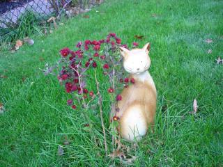 Это- могила одного кота.